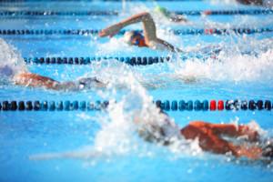 Les compétitions de natation