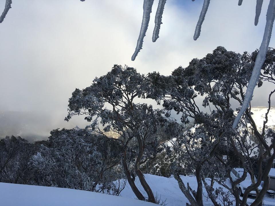 Tenter une expérience en skiant en Australie